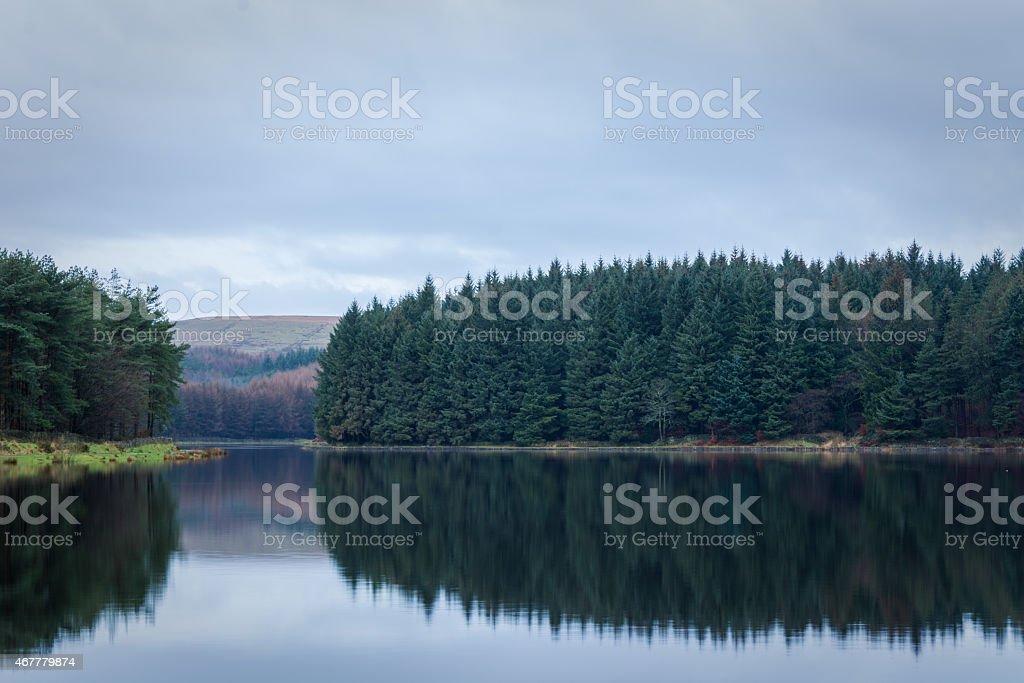 Beautiful Reflections At The Lake. stock photo