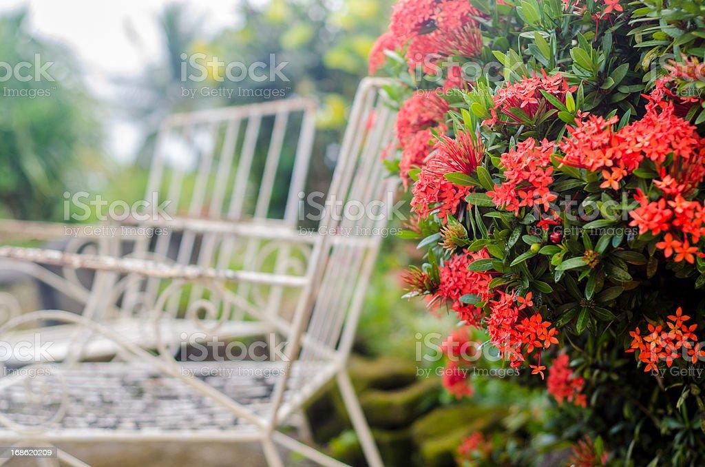 beautiful relaxing tropical garden with wrought iron chairs stock photo
