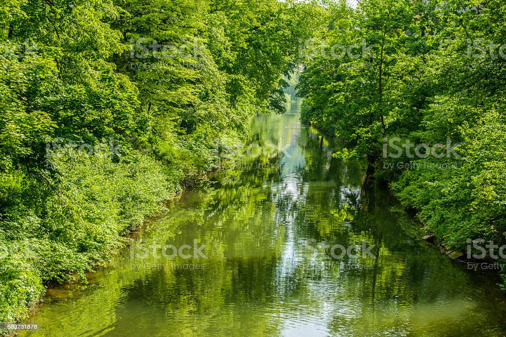 Beautiful River Scene Green Lush Trees Bushes Riverbank Spring stock photo