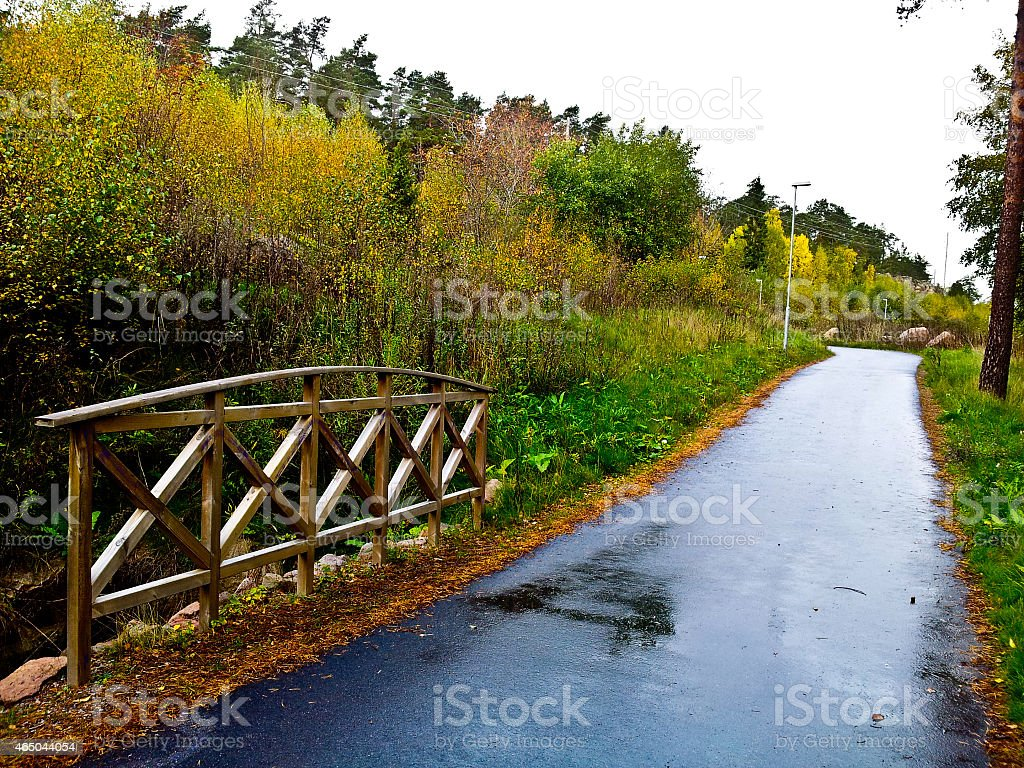 Beautiful road in a park royalty-free stock photo
