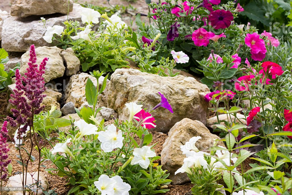 Beautiful rock garden stock photo