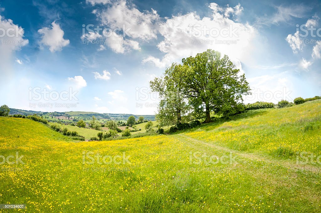 Beautiful Rolling Landscape On A Summers Day In The Cotswolds stock photo