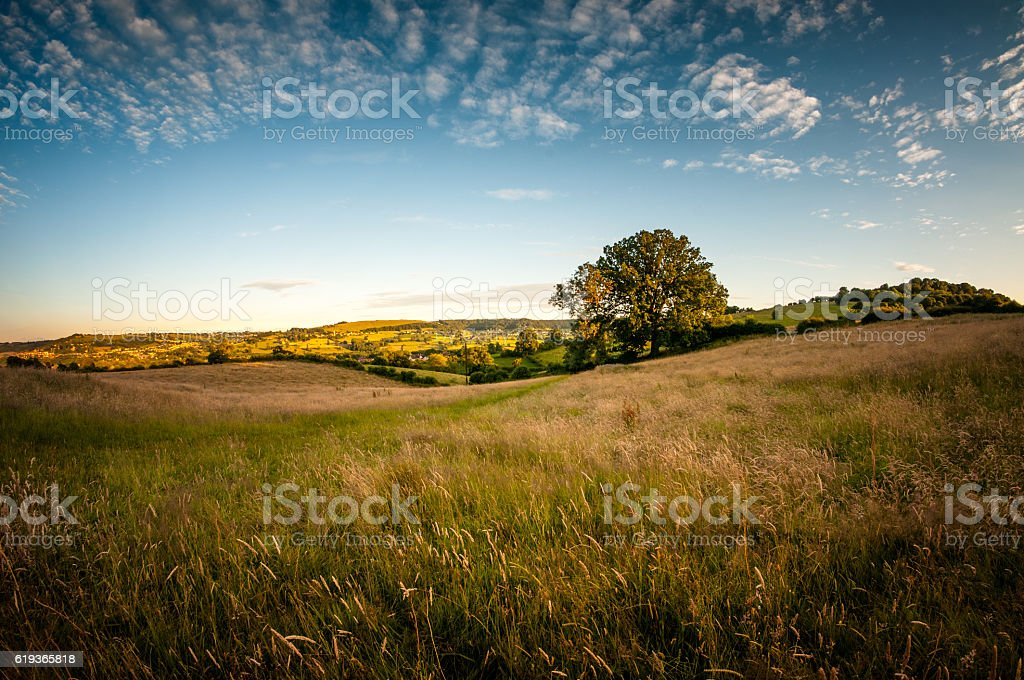 Beautiful Rolling Landscape On A Summers Evening In The Cotswolds stock photo
