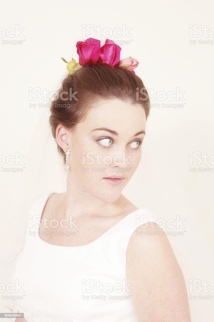 Beautiful Rose Bride stock photo