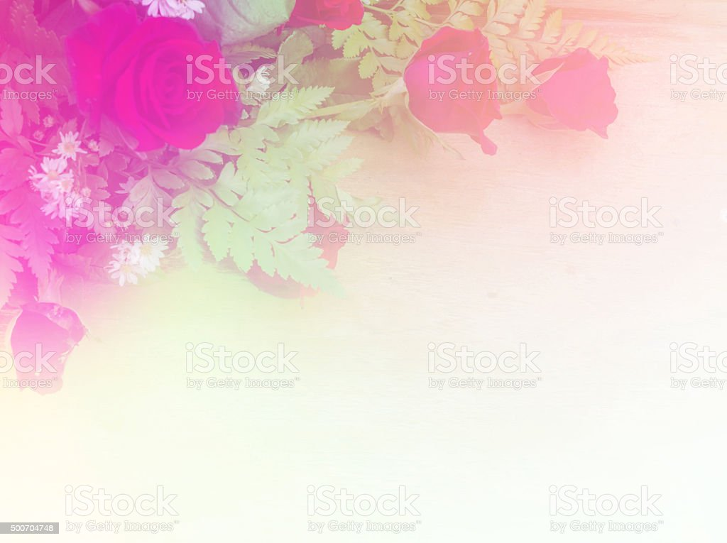 Beautiful rose flowers made with color filters. stock photo