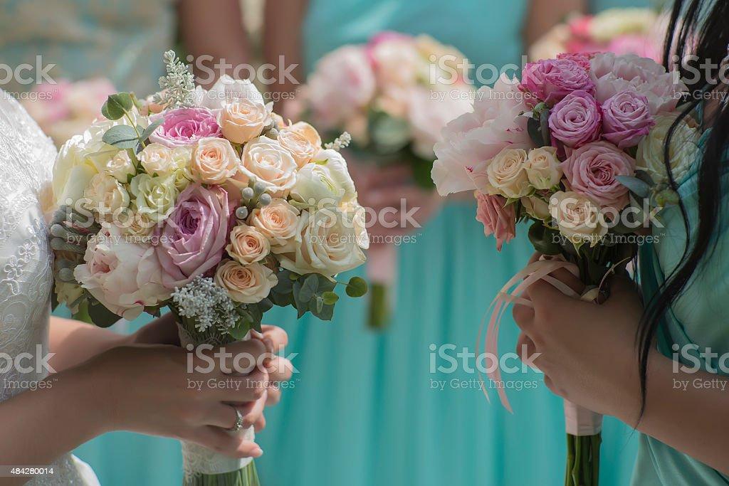 Beautiful rose flowers stock photo