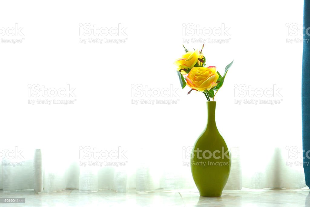 Beautiful roses behind the curtain royalty-free stock photo