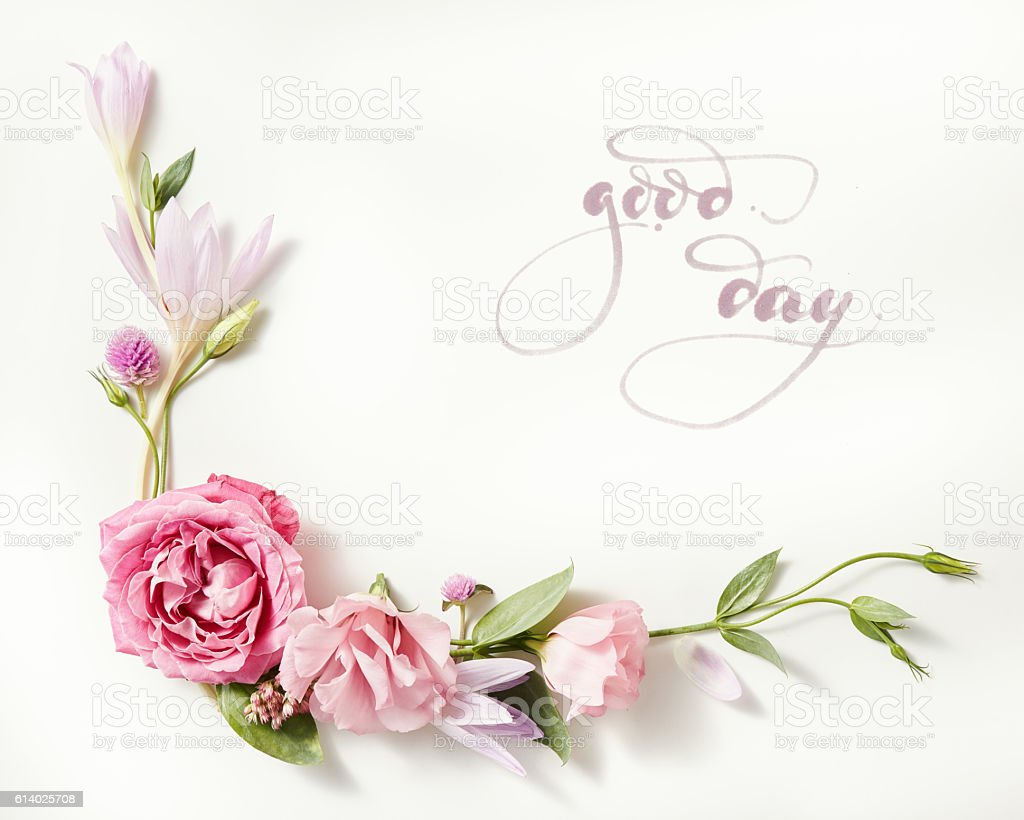 beautiful roses frame stock photo