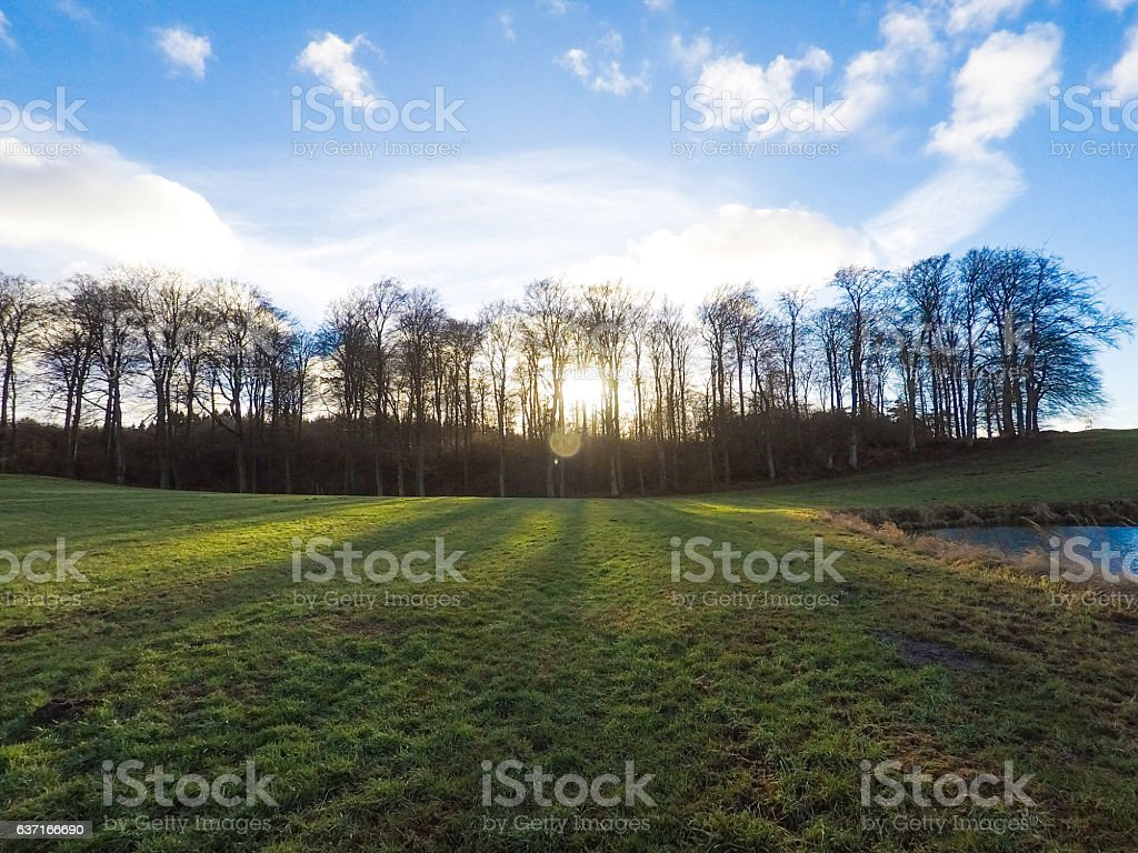 Beautiful rural landscape in the evening sun with blue sky stock photo