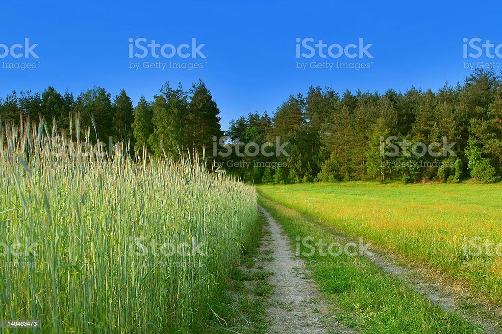 beautiful rural scene royalty-free stock photo