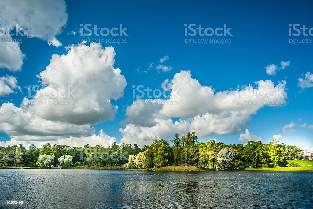Beautiful russian landscape with willows stock photo