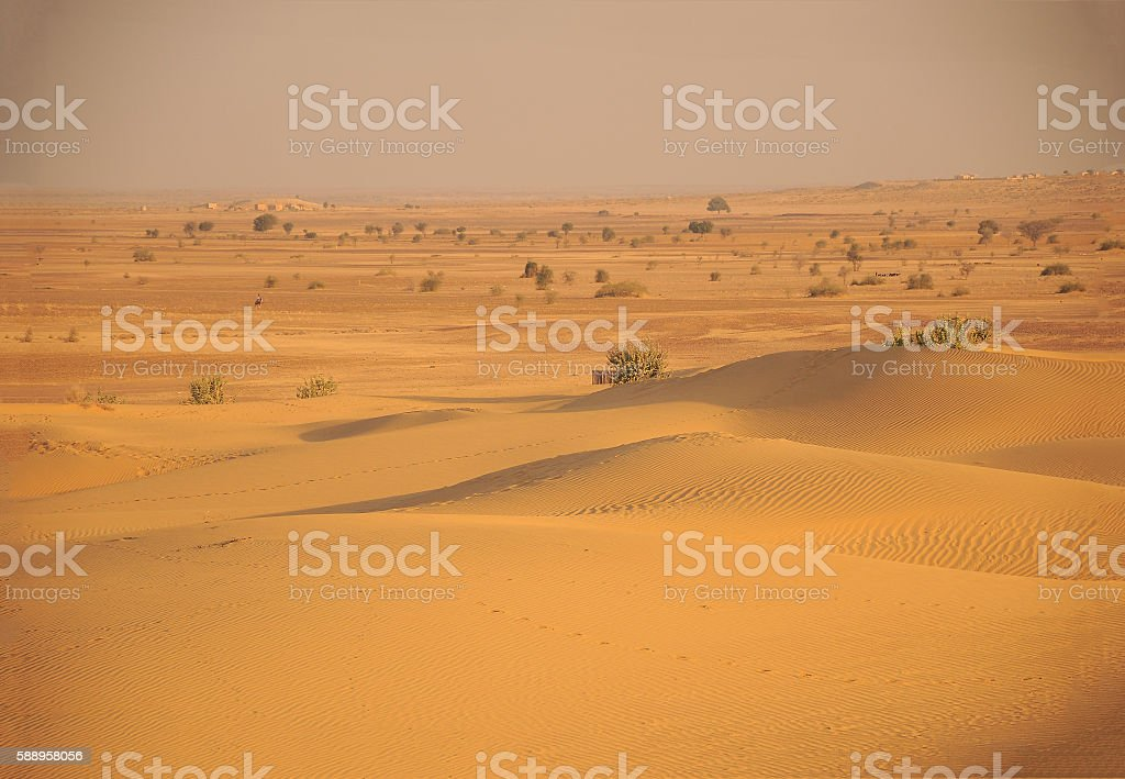 Beautiful sand dunes in Thar Desert, Rajasthan, India stock photo
