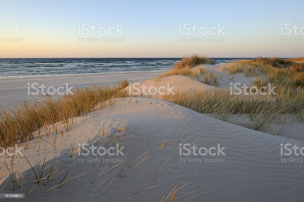 A beautiful sand dunes near the beach during sunrise royalty-free stock photo