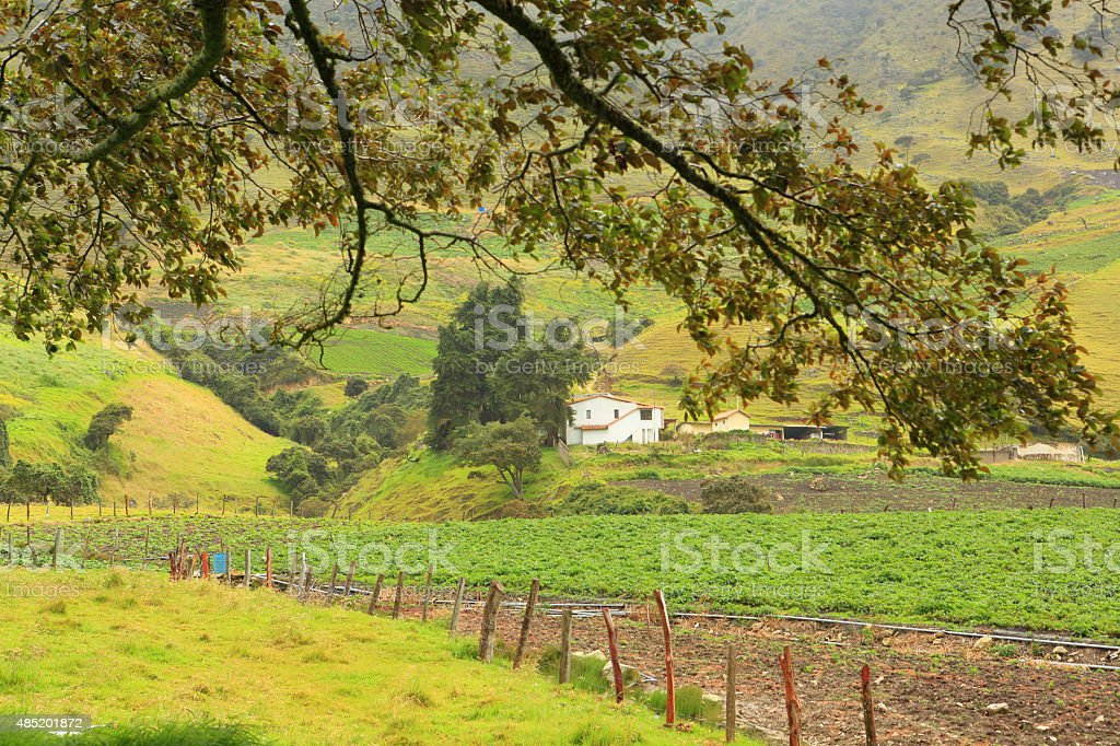 Beautiful Scence of Farms in Andean Venezuelan Mountains stock photo