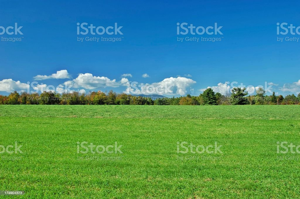 Beautiful scenery of green landscape and trees stock photo