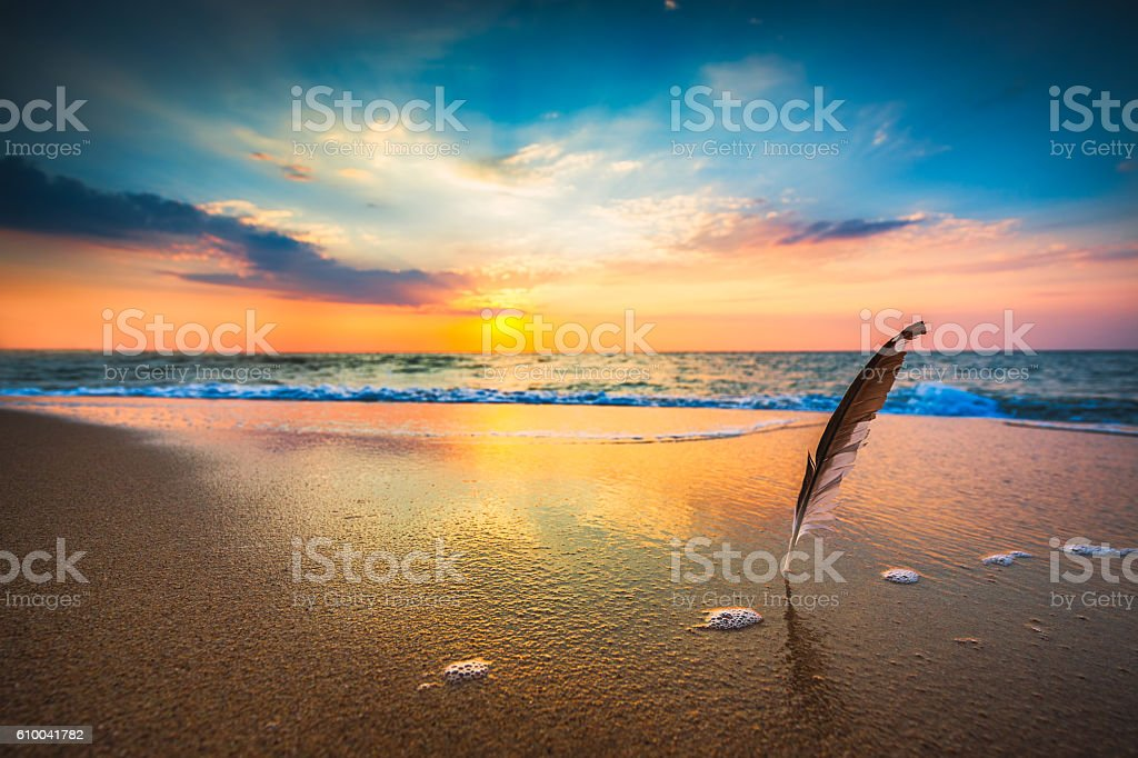 Beautiful sea sunrise and gull feather stuck into the sand stock photo