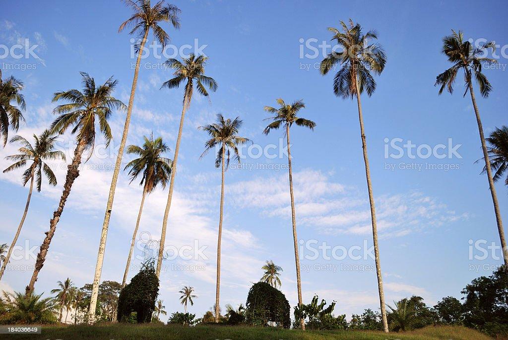 Beautiful sea view at Koh Mak royalty-free stock photo