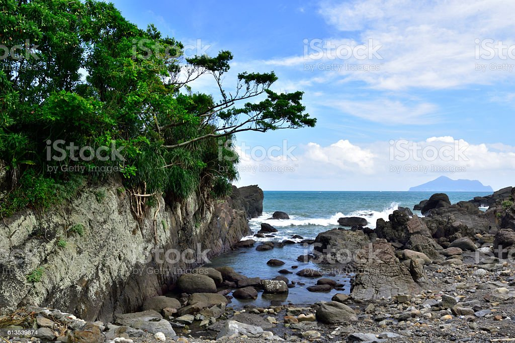 Beautiful seashore with blue sky and green plants stock photo