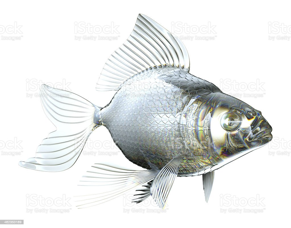 Beautiful semitransparent Glass fish isolated royalty-free stock photo
