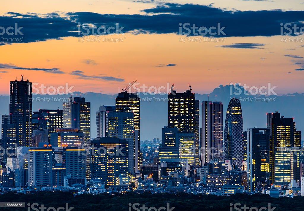 Beautiful Silhouette of Tokyo Skyline at Twilight stock photo