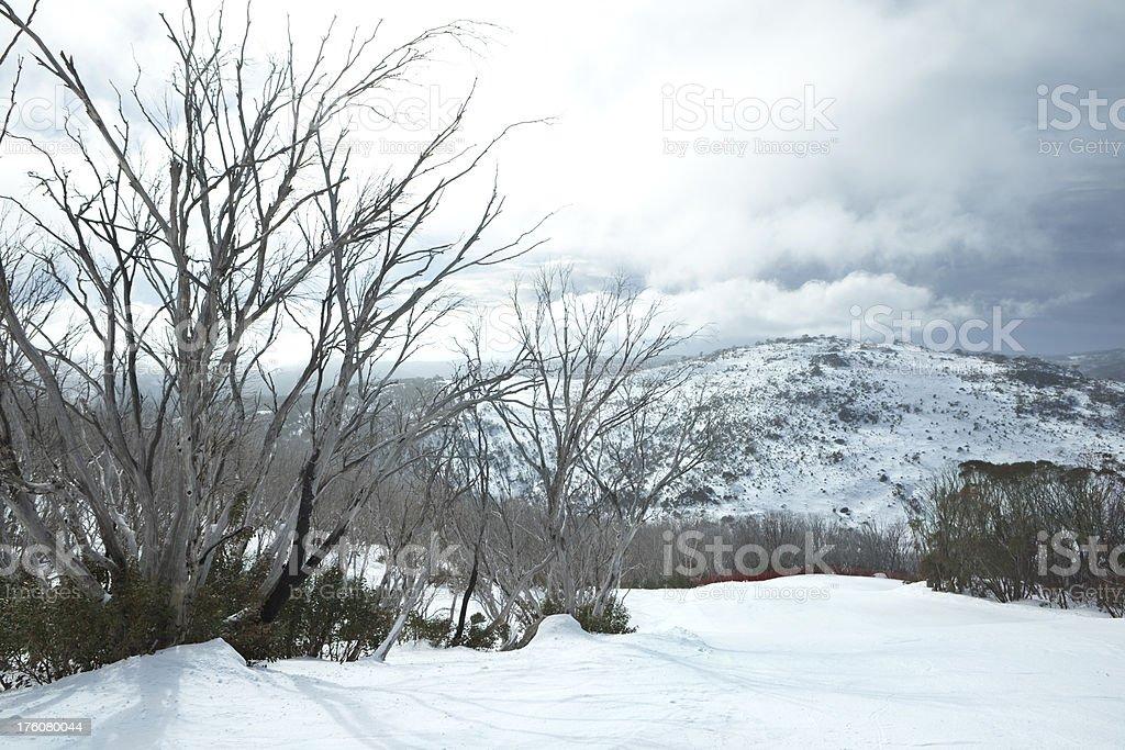 Beautiful ski slope royalty-free stock photo
