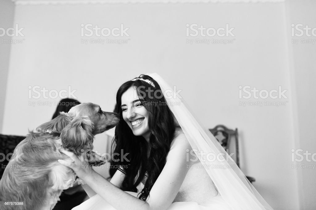 Beautiful smiling brunette bride stock photo