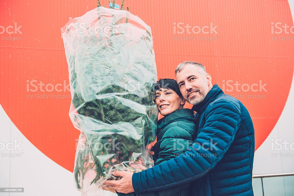 Beautiful Smiling Caucasian Couple Carrying Christmas Tree, Europe stock photo