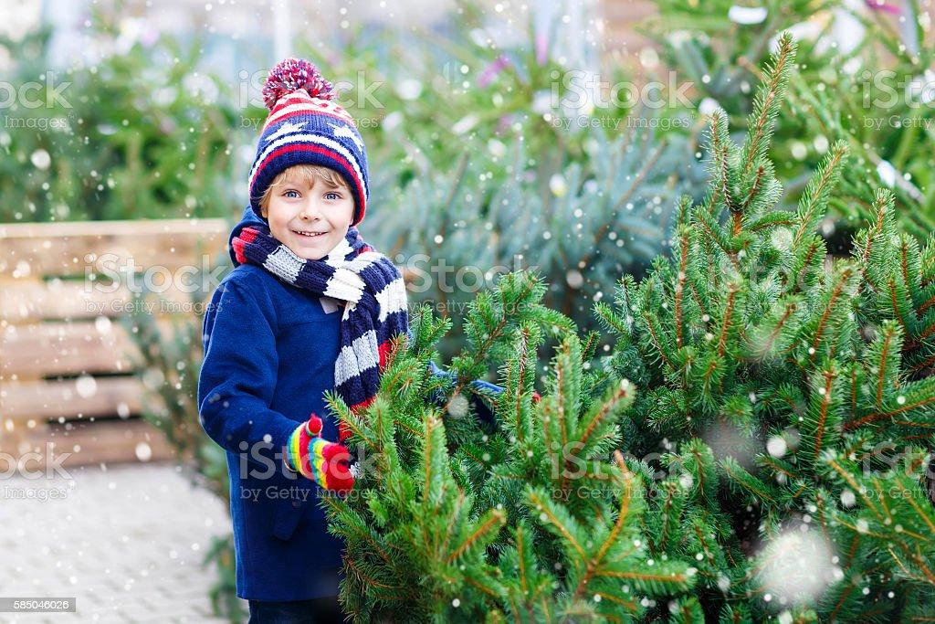 beautiful smiling little boy holding christmas tree stock photo