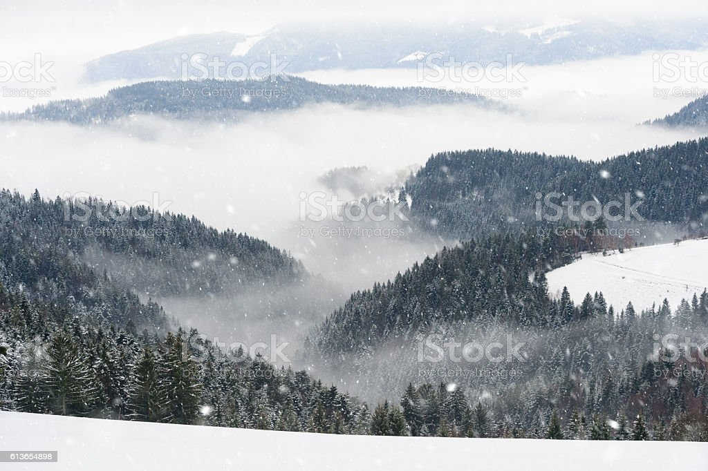 Beautiful Snowy Winter Morning stock photo