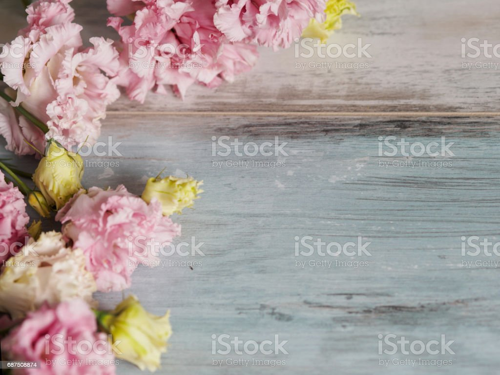 Beautiful spring blossom flowers background, on blue turquoise wooden background, place for text on the right. Springtime and nature concept stock photo