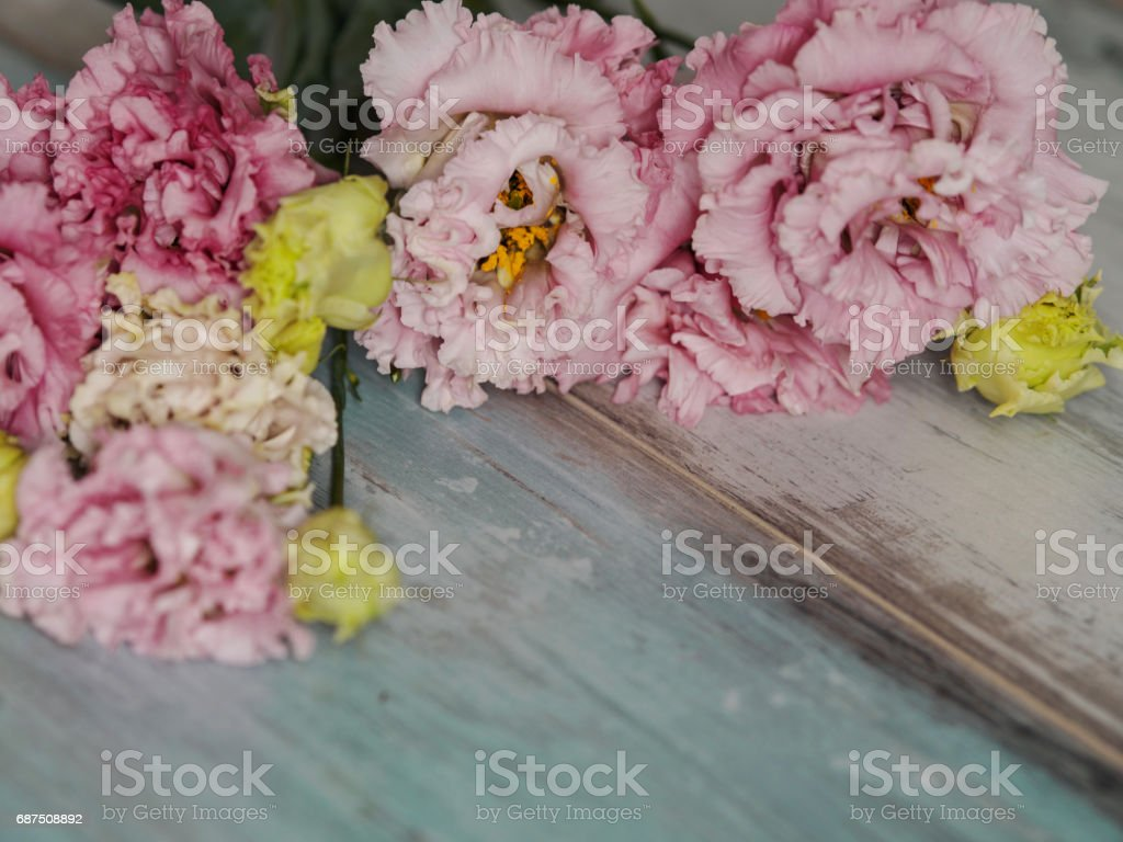 Beautiful spring blossom flowers background, on blue turquoise wooden background. Springtime and nature concept stock photo