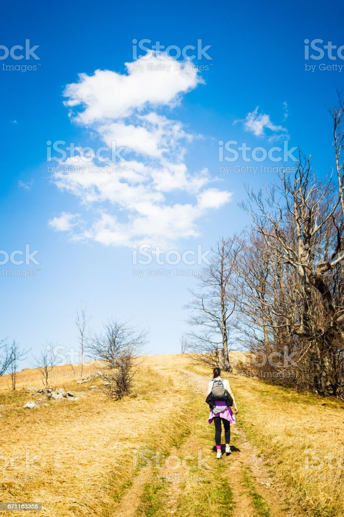 Beautiful spring landscape. Golden meadow, path,  deep blue sky, horizont and two hikers silhouette. Jablanik mountain, Serbia, Europe stock photo