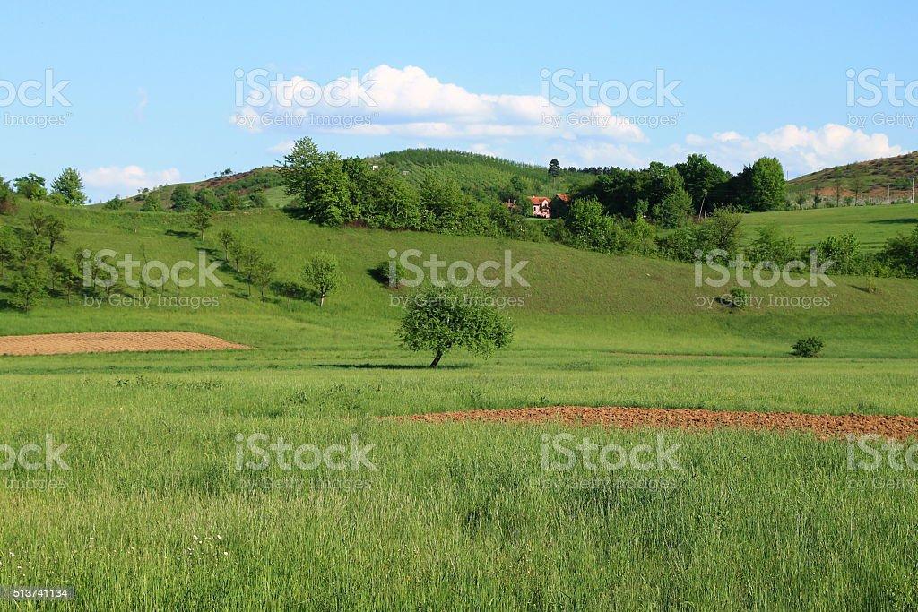 Beautiful spring landscape near the Sarajevo , Bosnia and Herzegovina stock photo