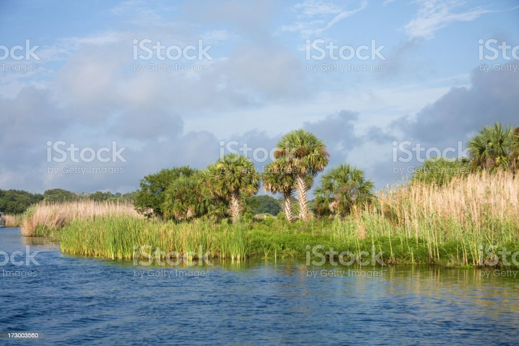 Beautiful St Johns River west of Mullet Lake royalty-free stock photo