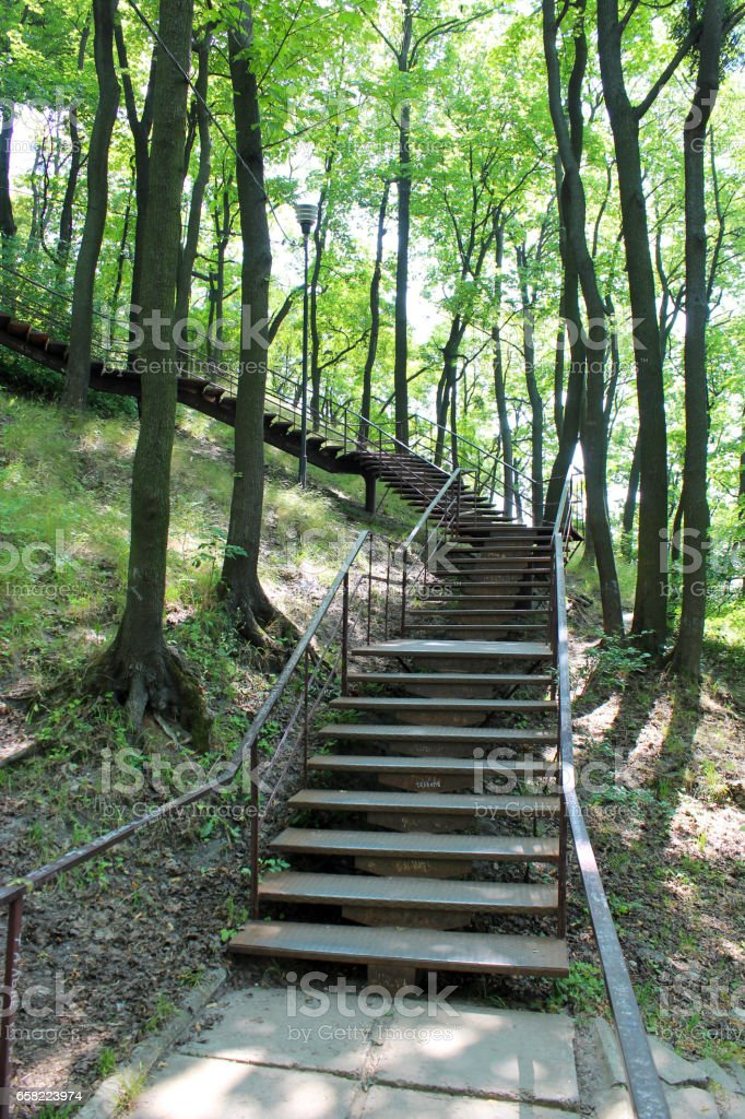 beautiful stairs in the park with big trees stock photo