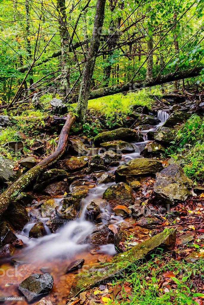 Beautiful stream in Shenandoah National Park in Virginia stock photo