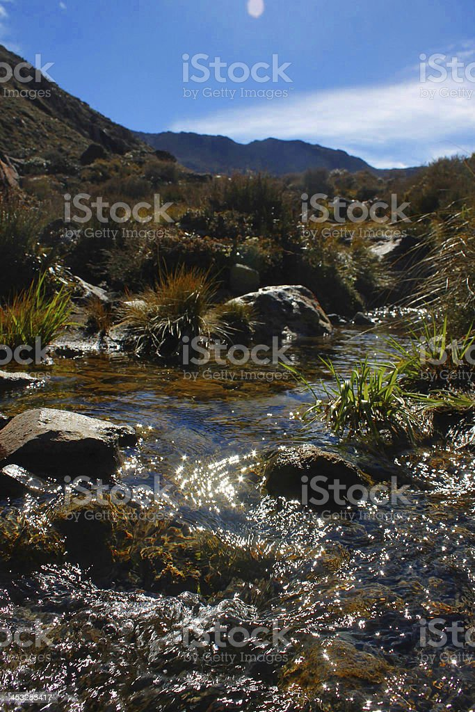 Beautiful Stream in the Great Mountains stock photo
