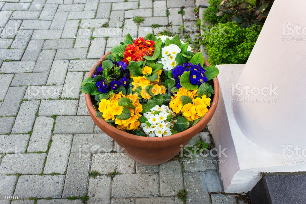 Beautiful street decorated with flowers stock photo