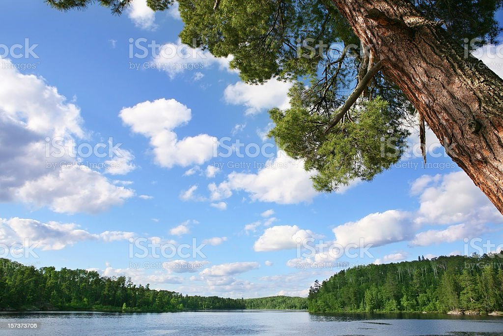 Beautiful Summer Day on a Wilderness Lake stock photo