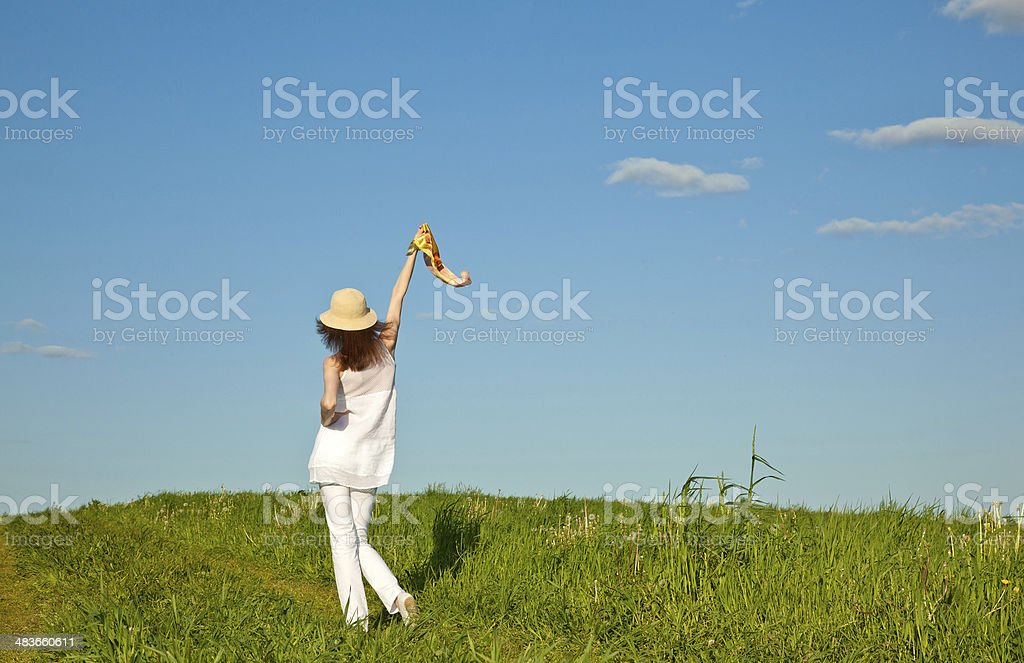 Beautiful summer day royalty-free stock photo