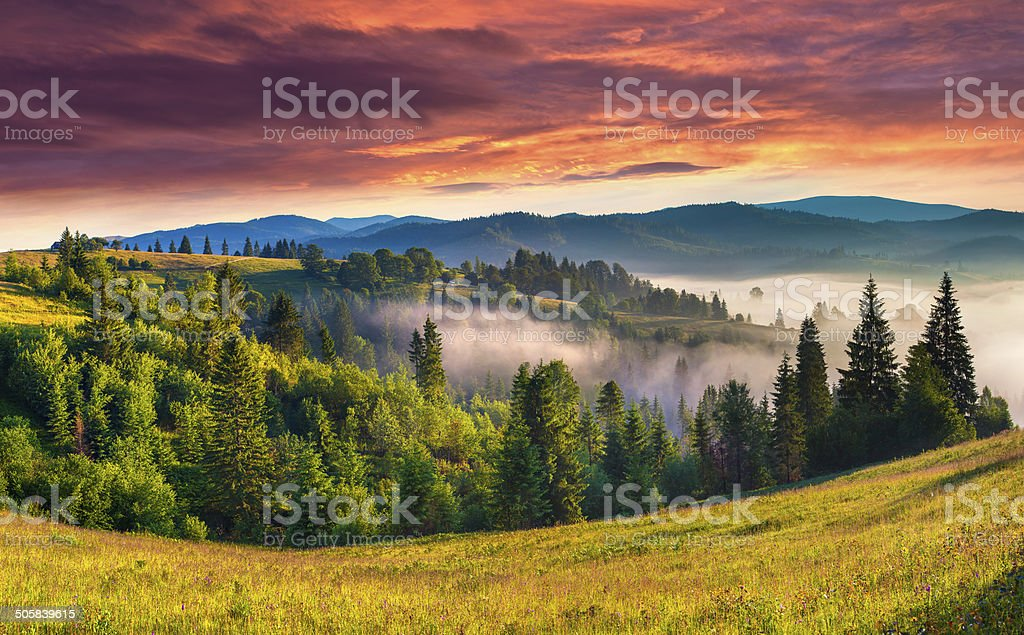 Beautiful summer landscape in the foggy mountains. stock photo