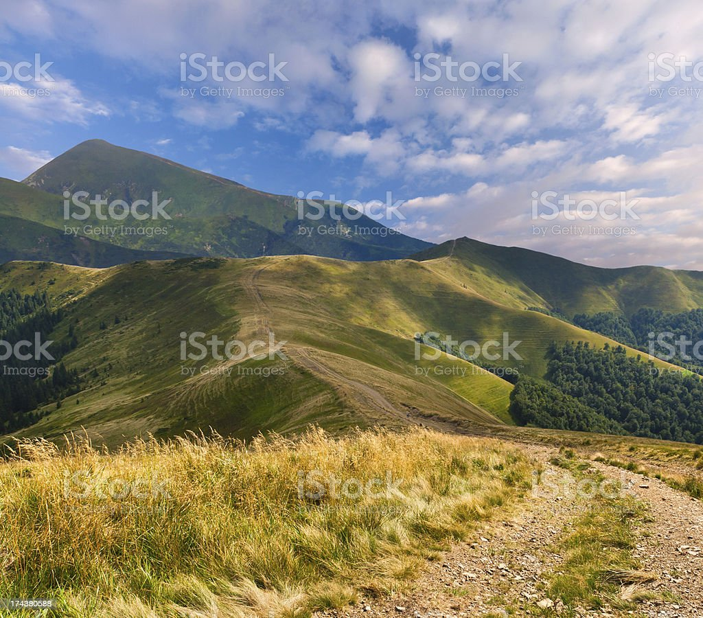Beautiful summer landscape in the mountains royalty-free stock photo