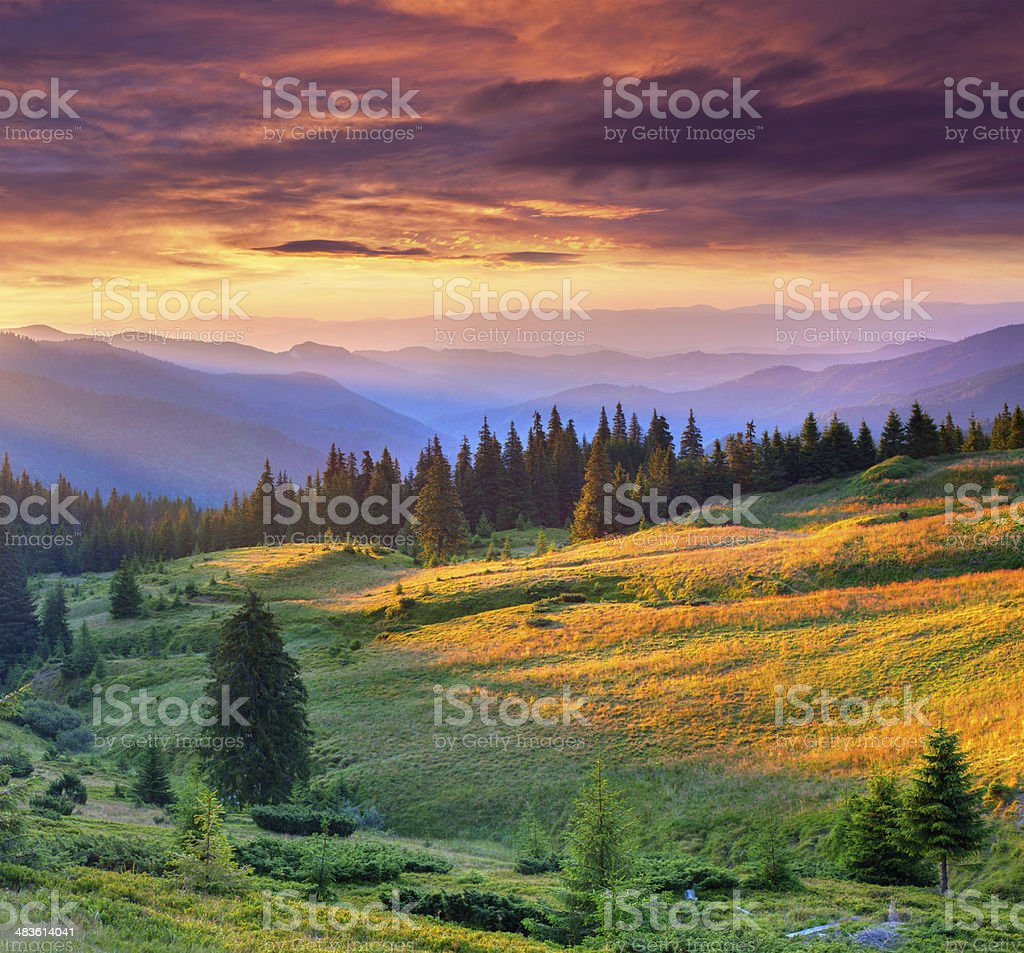 Beautiful summer landscape in the mountains. stock photo