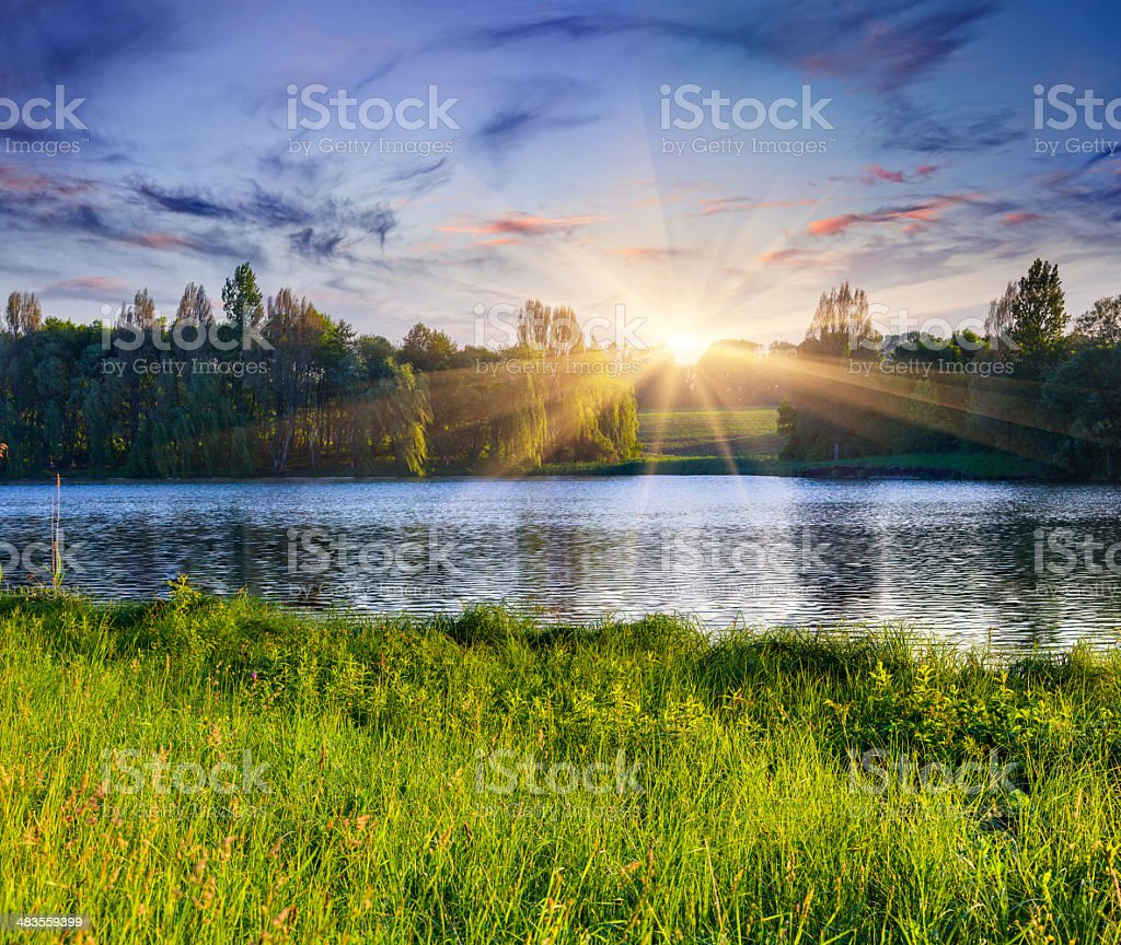 Beautiful summer landscape on the lake. stock photo