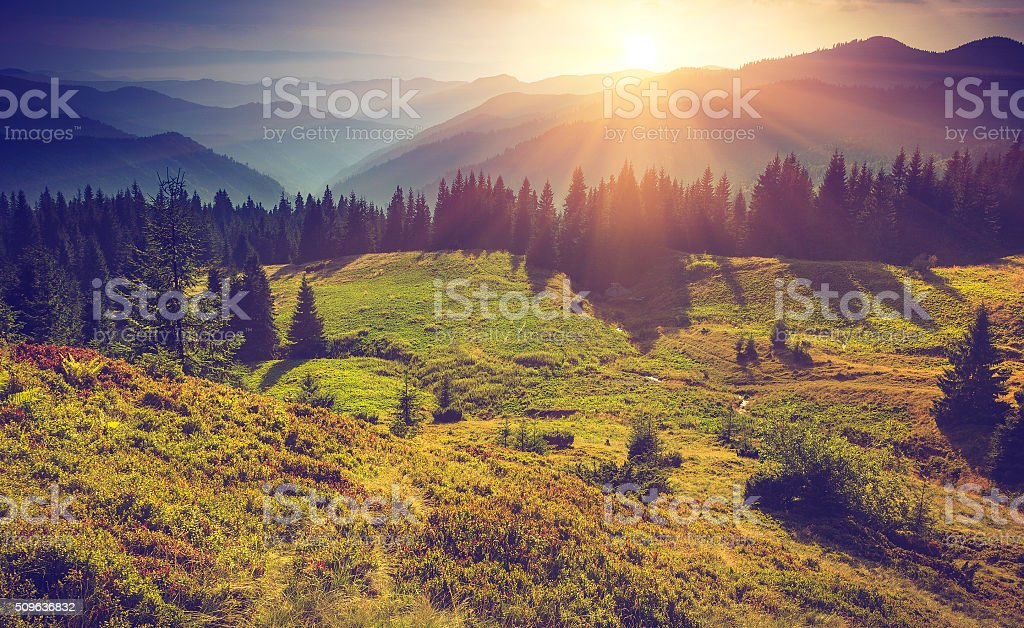 Beautiful summer mountain landscape at sunrise stock photo