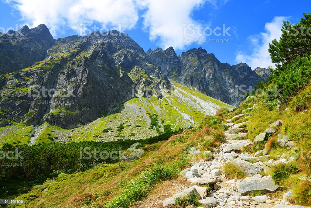 Beautiful summer mountain landscape in Western Carpathians stock photo