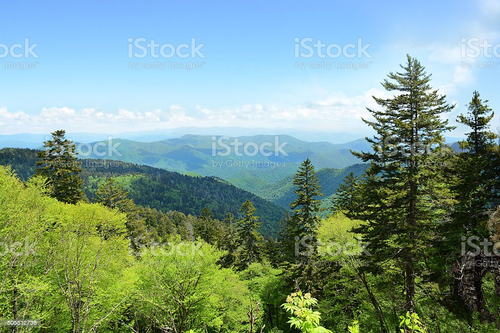 Beautiful summer mountain landscape. stock photo