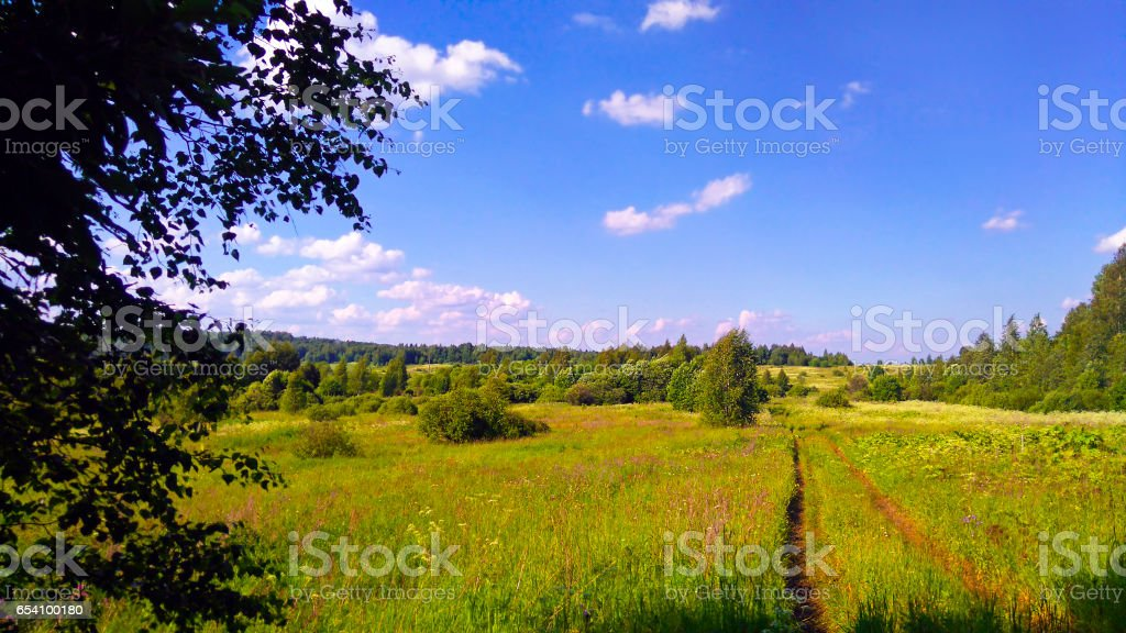 Beautiful summer rural landscape. stock photo