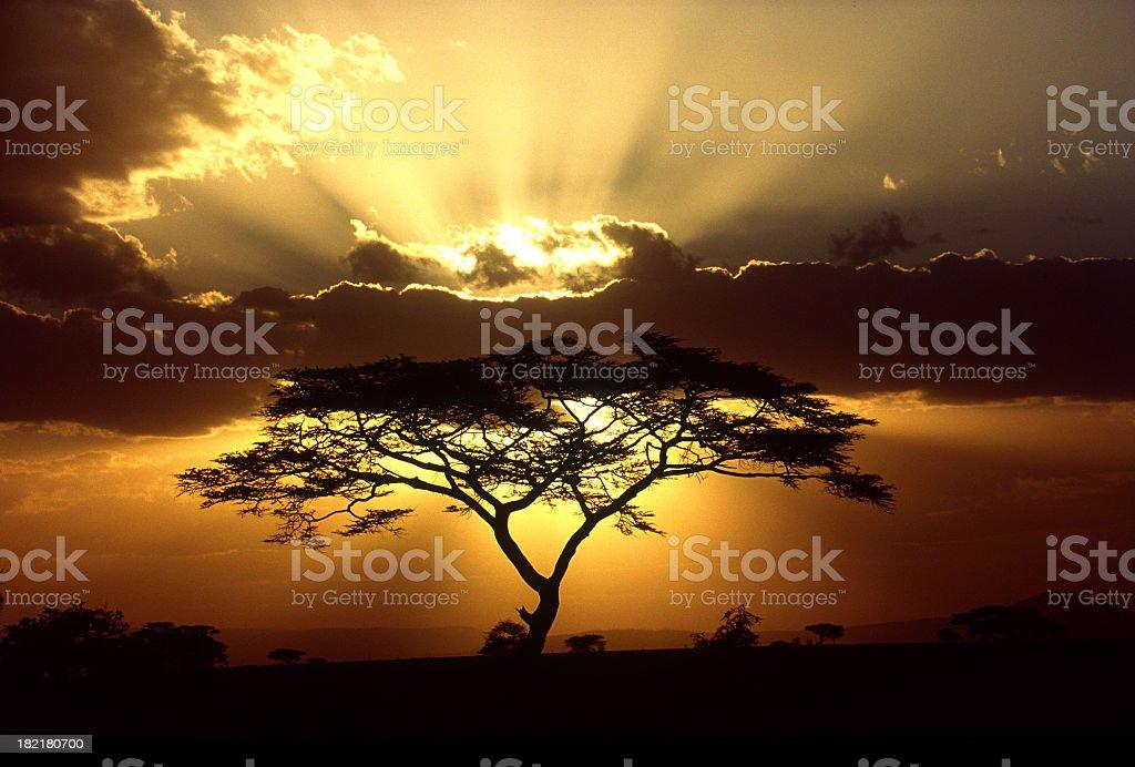 Beautiful sun beaming through the clouds stock photo