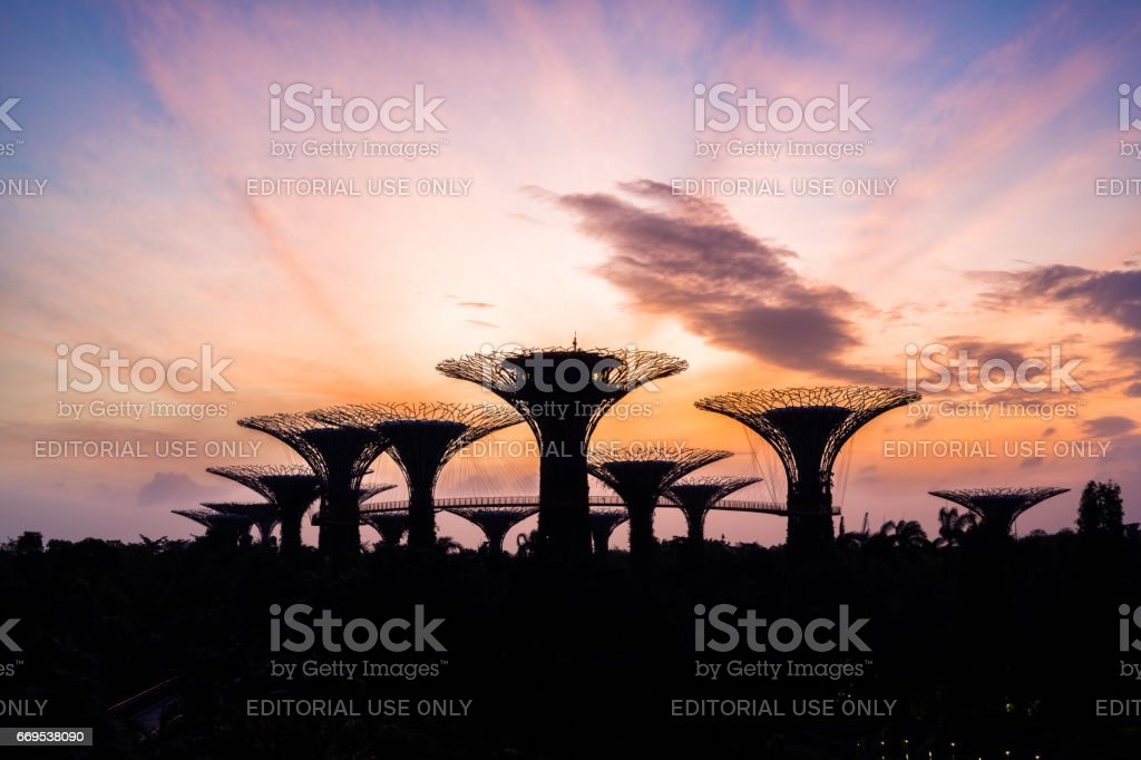 Beautiful sunrise at Gardens by the Bay in Singapore stock photo
